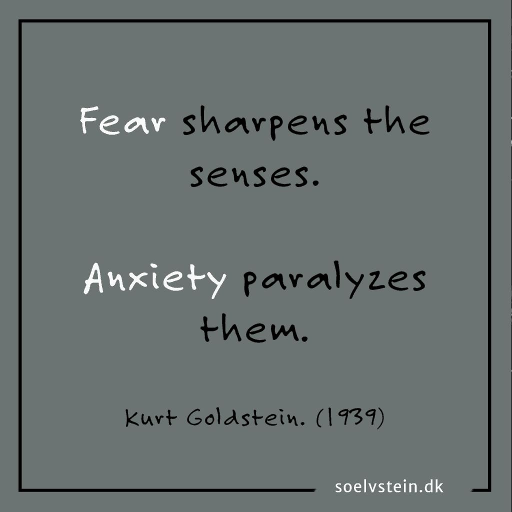 Alle der har haft et angstanfald ved, at det er langtfra en almindelig oplevelse af frygt eller nervøsitet