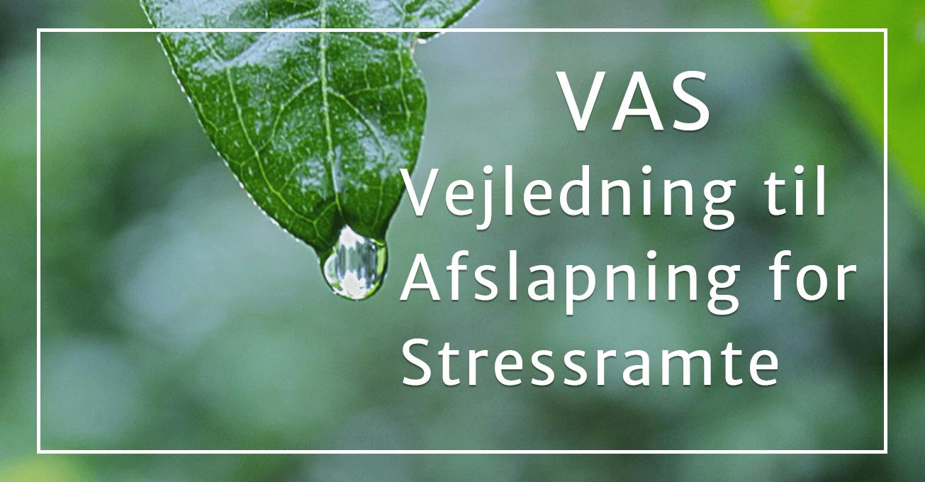 Vejledning til Afslapning for Stressramte (VAS)
