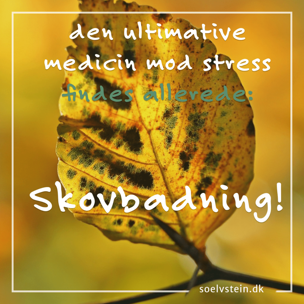 medicin mod stress