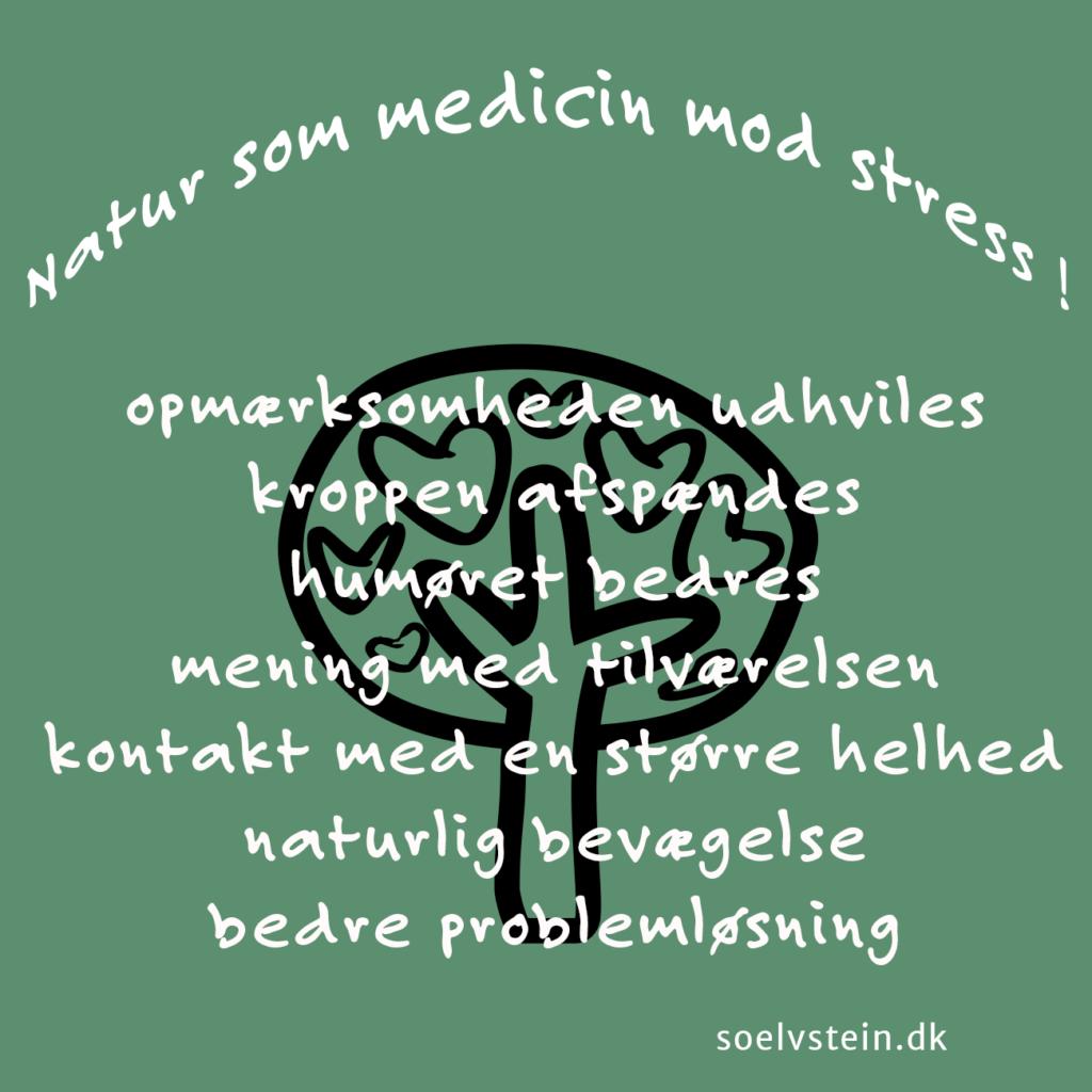 naturen som medicin