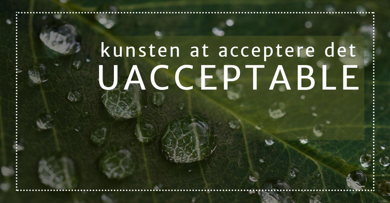 Kunsten at acceptere det uacceptable – 4 refleksioner