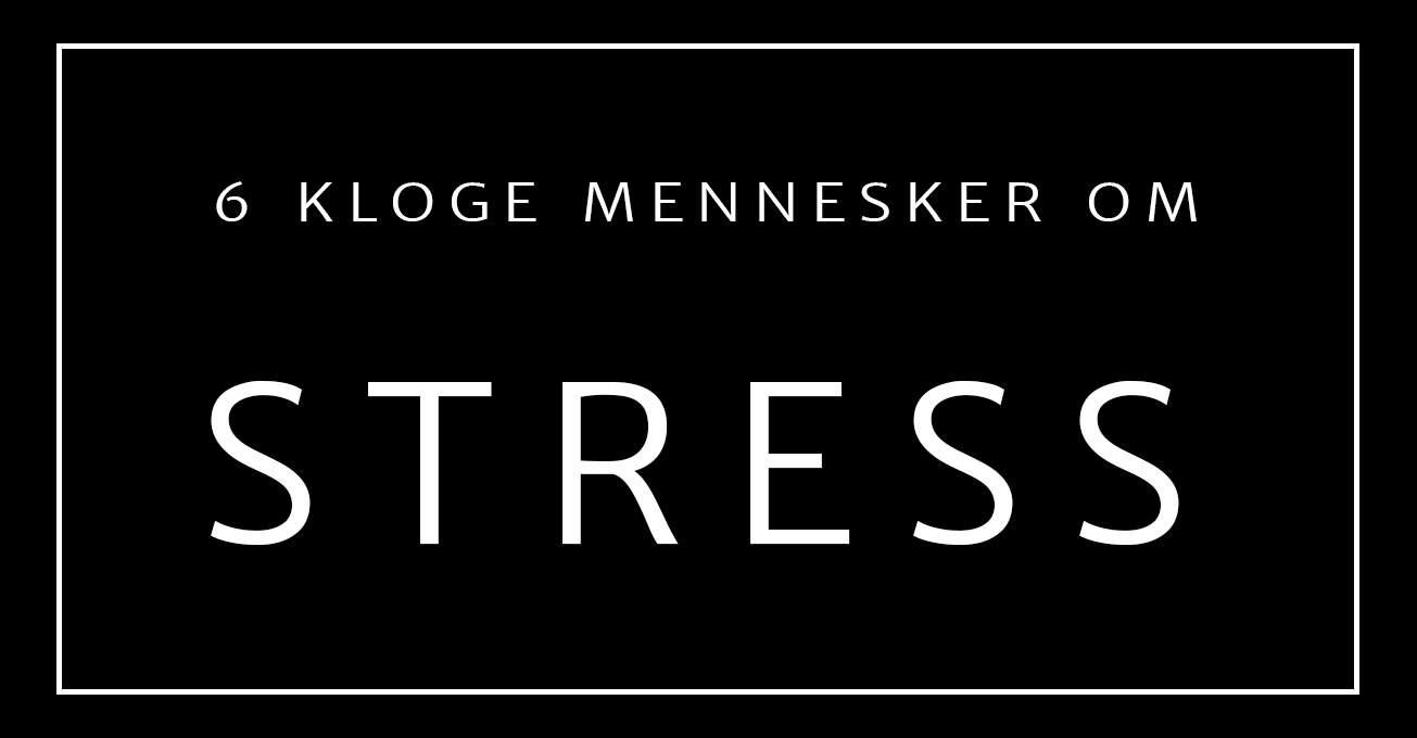 6 kloge mennesker om stress