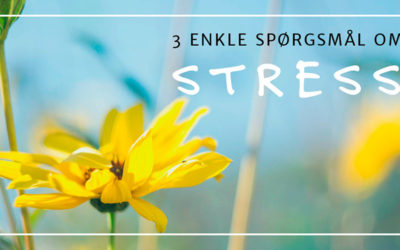 3 enkle spørgsmål om stress