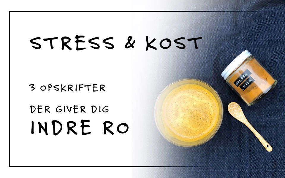 Stress og kost – 3 opskrifter der giver dig ro i kroppen