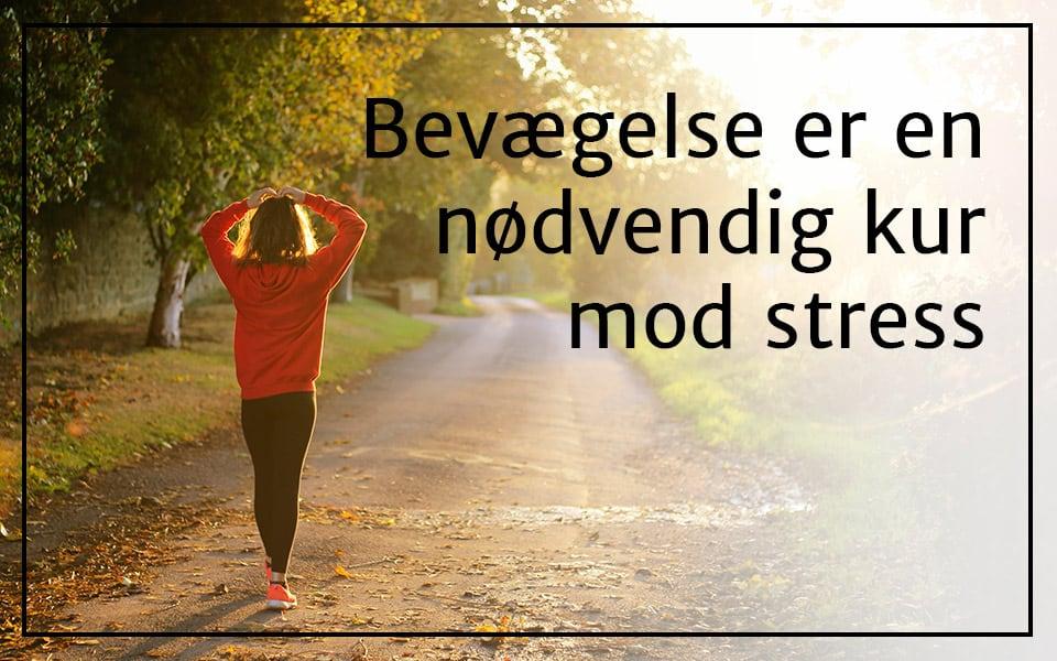 Bevægelse er en nødvendig kur mod stress