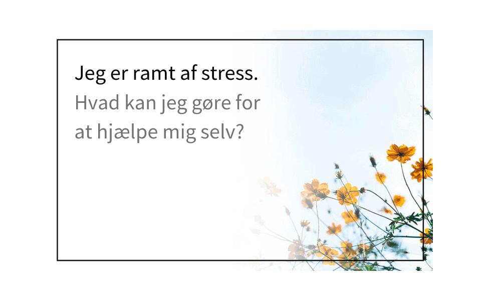 #53 Jeg er ramt af stress. Hvad kan jeg gøre for at hjælpe mig selv?