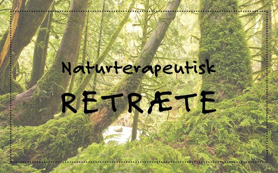 Naturterapeutisk retræte – et sikkert middel mod alvorlig stress