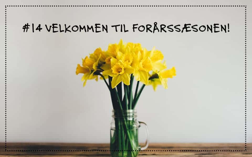 #14 Velkommen til forårssæsonen af Psykologen i Øret