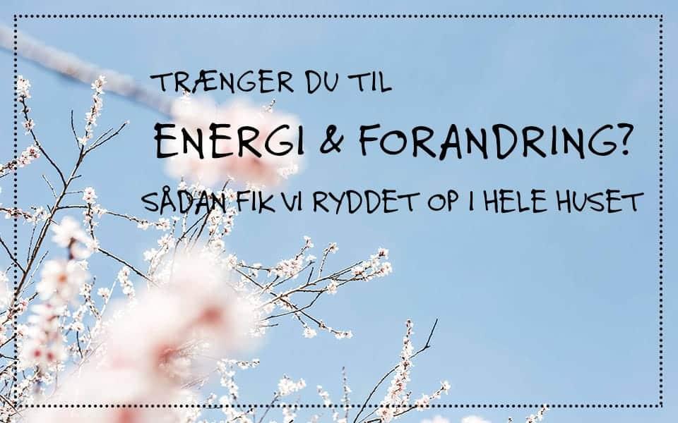Trænger du til energi og forandring? Sådan fik vi ryddet op i hele huset.