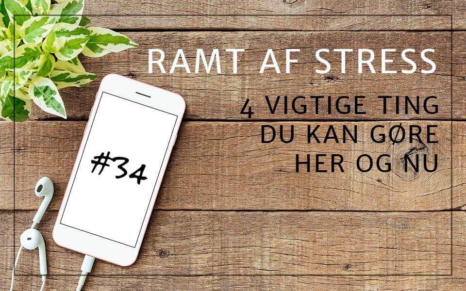 #34 Ramt af stress – 4 vigtige ting du kan gøre her og nu