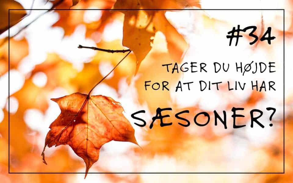 #36 Tager du højde for, at dit liv har sæsoner?