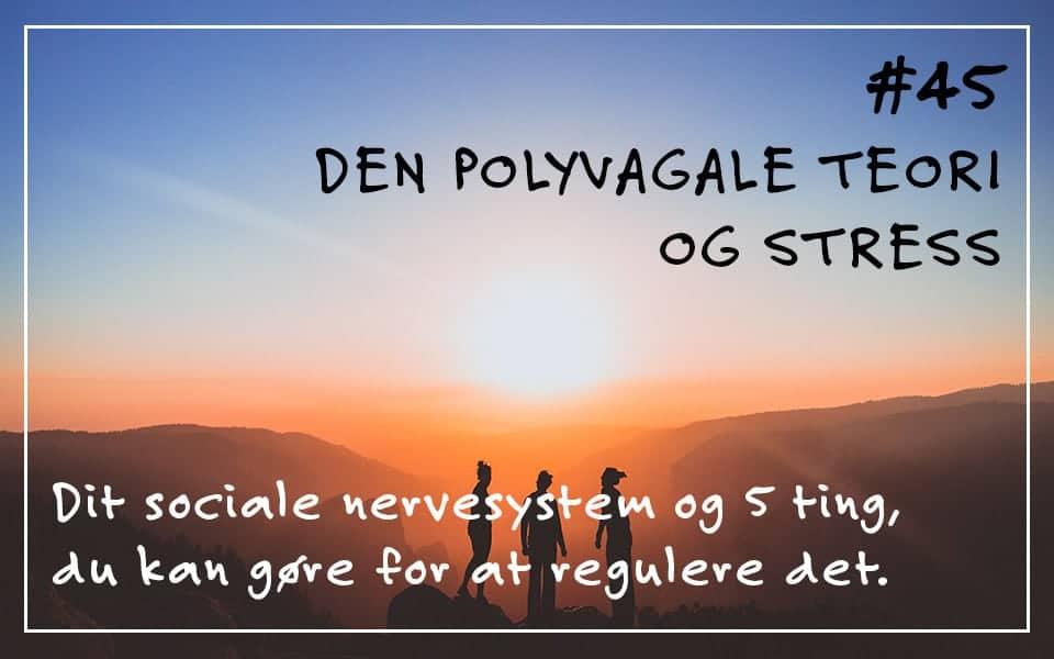 Den polyvagale teori og stress. Om dit sociale nervesystem og 5 ting, du kan gøre for at regulere det.