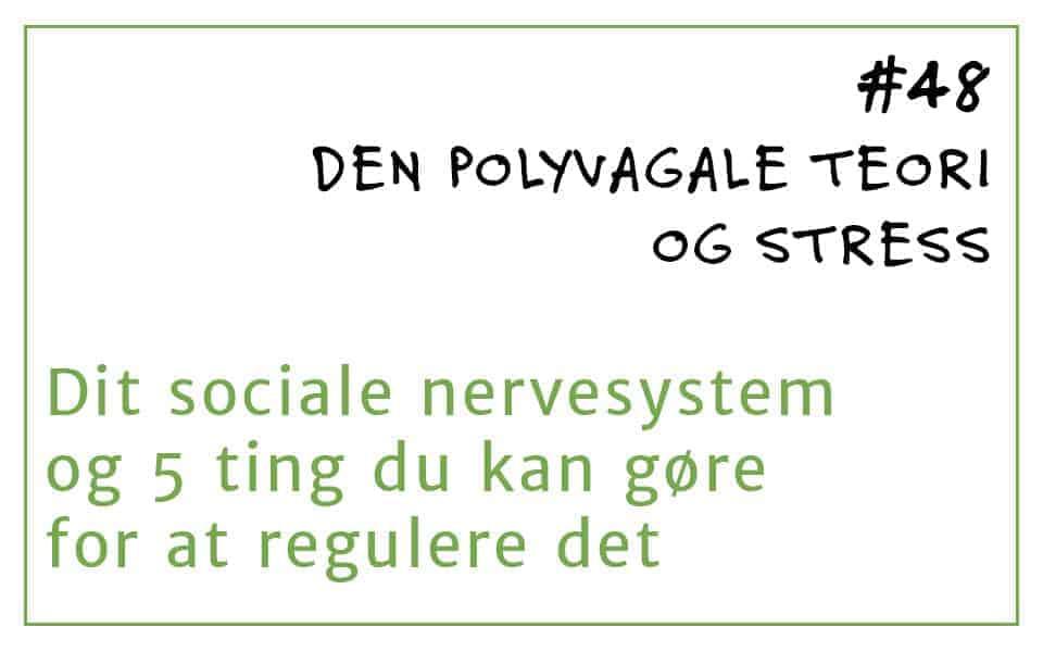 #48 Den polyvagale teori og stress. Om dit sociale nervesystem og 5 ting, du kan gøre for at regulere det.