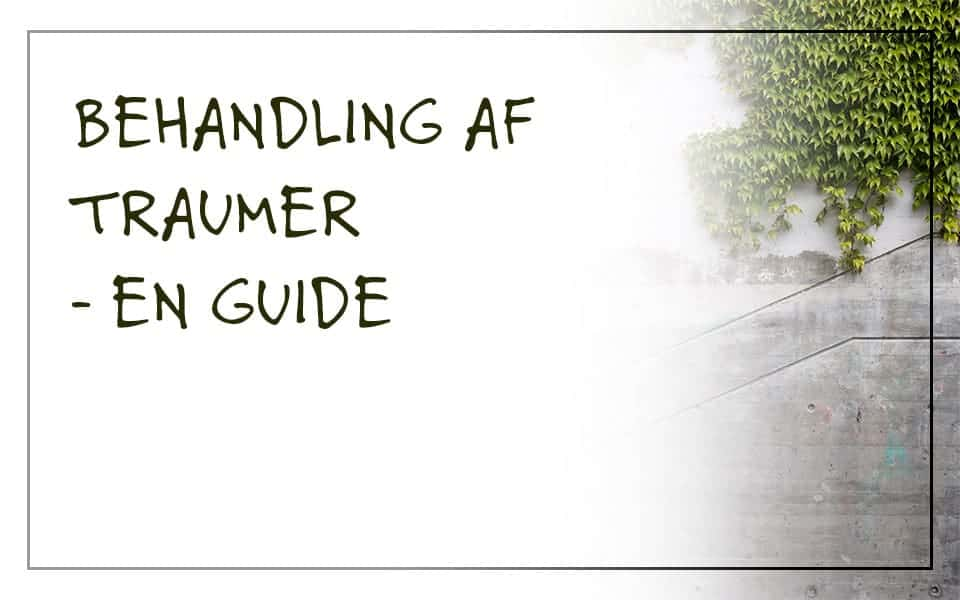 Behandling af traumer – en guide