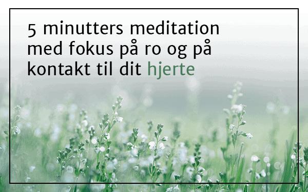 5 minutters meditation med fokus på ro og kontakt til dit hjerte
