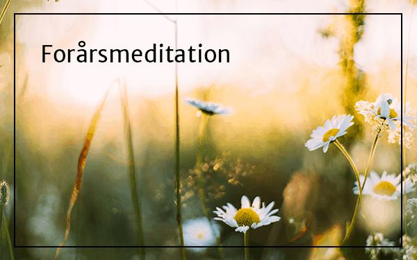 Forårsmeditation – giv slip på gammel energi og sæt et klar intention